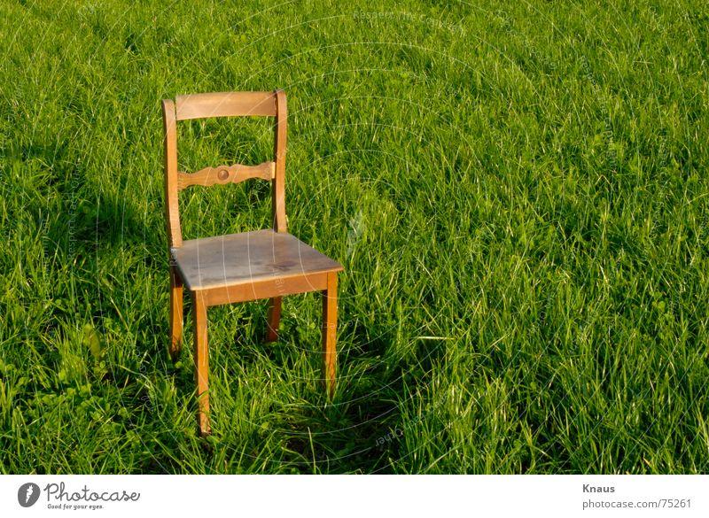 Chair Wiese grün Holzmehl abstrakt Kunst hellgrün Stuhl chair Rasen grass Einsamkeit abstract alone