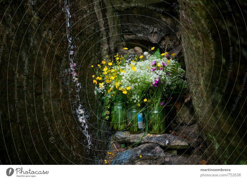 Heilige Grotte Frühling Blume Felsen Blumenstrauß Traurigkeit Trauer Religion & Glaube Farbfoto Außenaufnahme Menschenleer Textfreiraum links