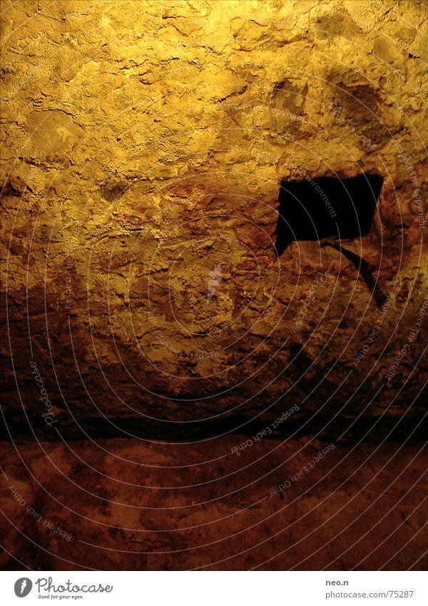 Kellergemäuer Haus Mauer Wand Kellergewölbe Kellerwand Stein dunkel braun Angst Felsen Katakomben Gemäuer verfaulen Farbfoto Innenaufnahme Detailaufnahme