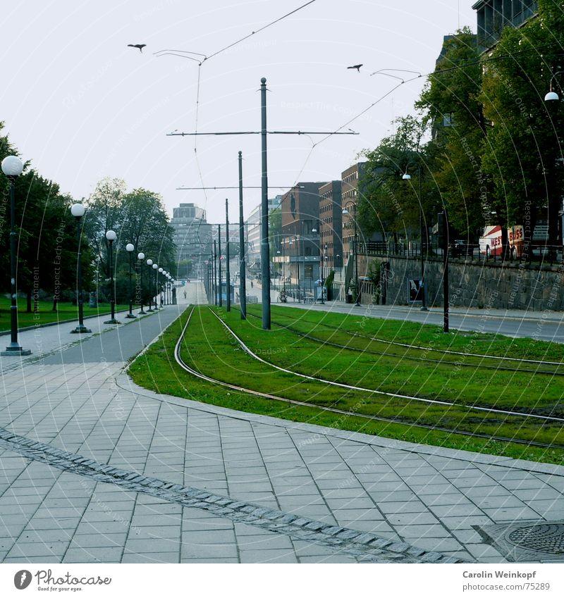 Es geht bergab. Gleise Gras abwärts Laterne Bürgersteig Straßenbahn Fluchtpunkt Oslo September Baum Haus Stadt Rasen grrün Stein