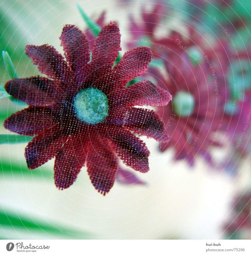 kunstblume wird zu kunst .. Natur Pflanze Blume rot Blüte Kunst Dekoration & Verzierung Blühend Fabrik Statue falsch Kunstwerk