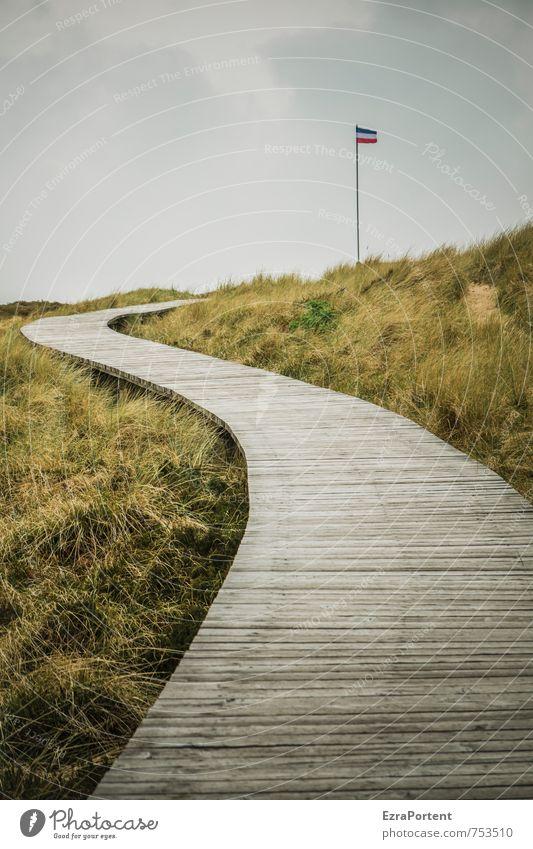 Nordfriesland Himmel Natur Ferien & Urlaub & Reisen grün Pflanze Sommer Erholung Landschaft ruhig Umwelt Herbst Frühling Gras grau natürlich Freiheit
