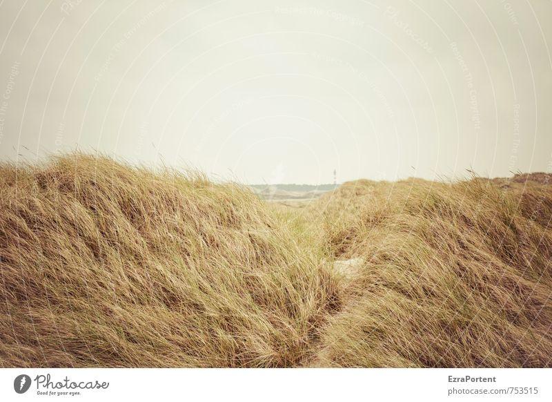 da, ein Leuchtturm Himmel Natur Ferien & Urlaub & Reisen grün Pflanze Meer Erholung Landschaft ruhig Strand Umwelt Küste Gras grau natürlich braun