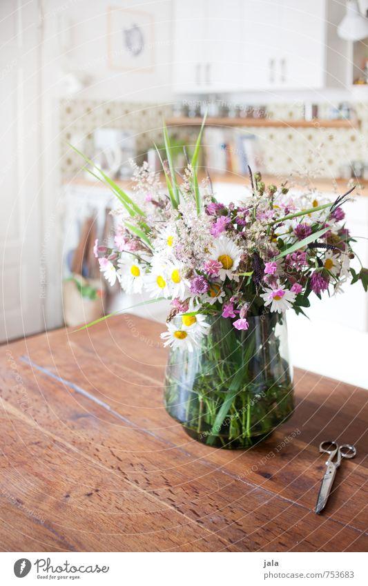 blumenstrauß Pflanze Blume Blatt Innenarchitektur Blüte natürlich hell Wohnung Häusliches Leben Dekoration & Verzierung ästhetisch Fröhlichkeit Tisch