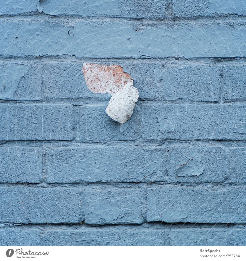 Tapetenwechsel London England Bauwerk Mauer Wand alt kaputt Stadt grau Backstein Backsteinwand losgelöst Untergrund Fleck Auswechseln abblättern Farbstoff