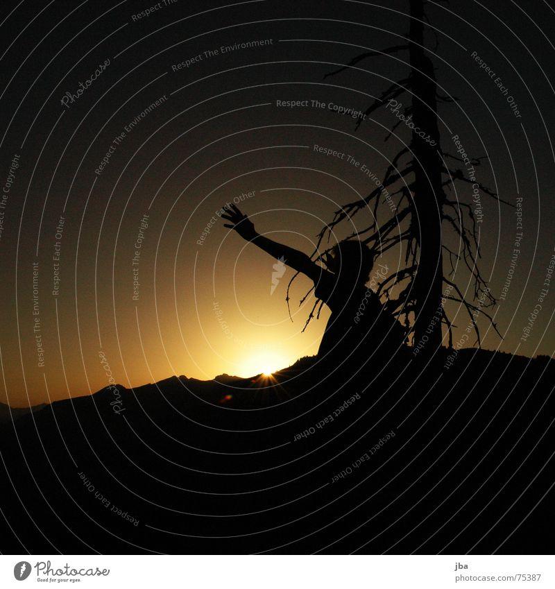 Worship him forever! Mensch Himmel Mann Hand weiß Sonne schwarz gelb Tod Berge u. Gebirge Graffiti Arme Beleuchtung Tanne Gebet Abenddämmerung