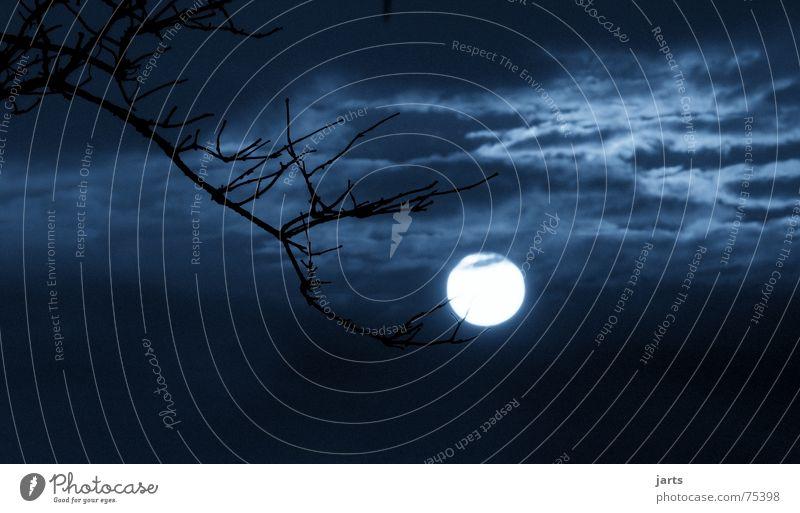 Moonlight Vollmond Nacht dunkel Wolken Licht Geister u. Gespenster gruselig Halloween Mond gruseln Angst Ast Himmel jarts