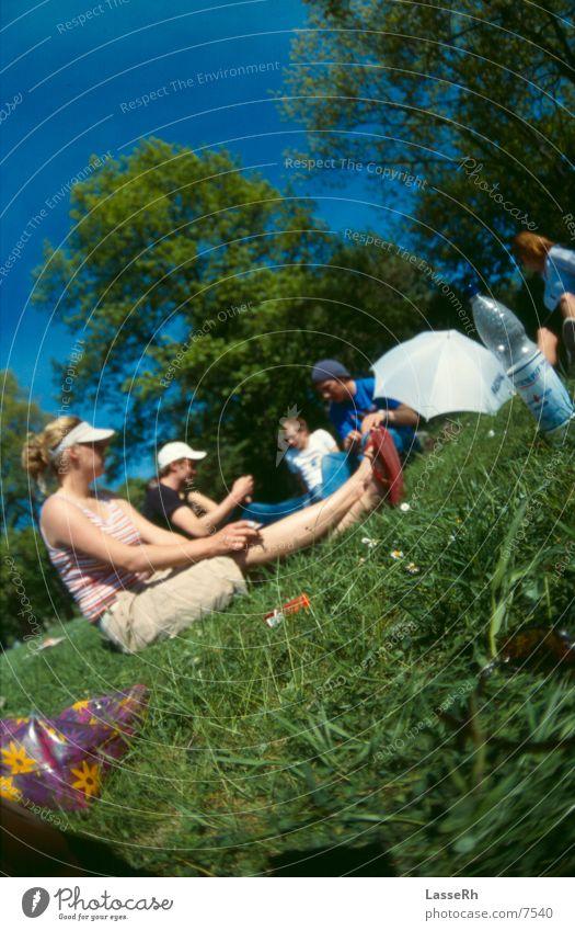 Schlosspark Gelage schön Sonne grün Sommer Erholung Wiese Gras