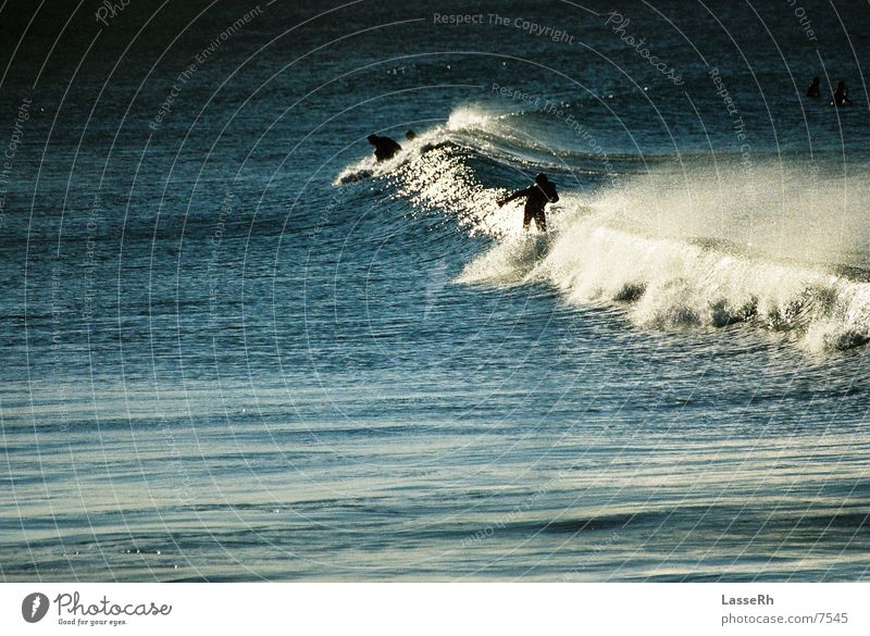 Surfing the sunset Surfen Wellen Meer Australien Byron Sport Wasser