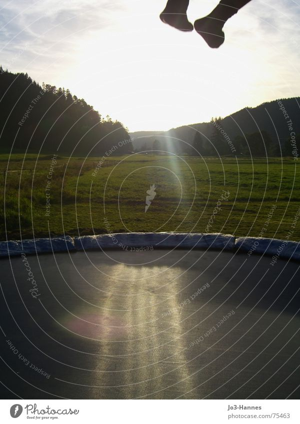 Abflug II Sonne Freude Wald Leben Wiese oben Wege & Pfade springen Beine Fuß Kraft geschlossen fliegen hoch Beginn Hose