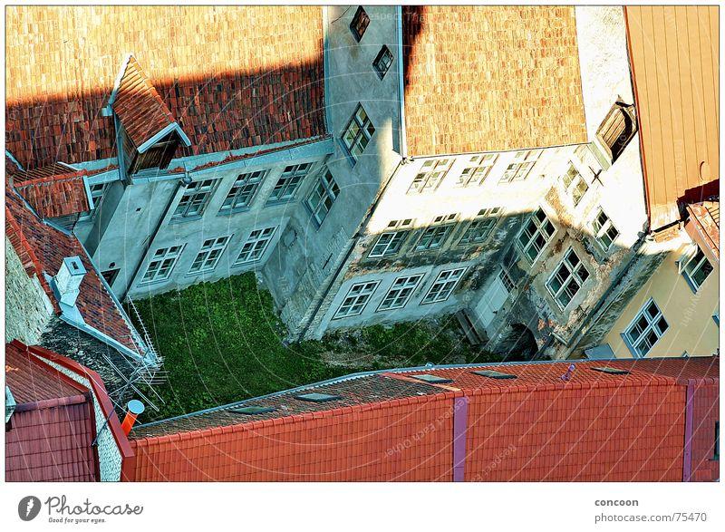 Tallinn Courtyard Wiese Verfall Hinterhof Einblick Innenhof Tallinn Estland