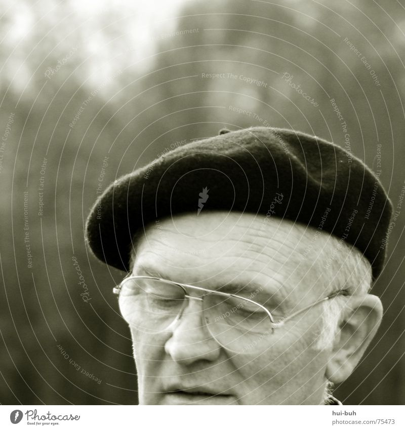 Grandfather Mann alt weiß Baum Einsamkeit Gesicht Auge Leben Haare & Frisuren grau hell geschlossen Nase Brille Ohr streichen