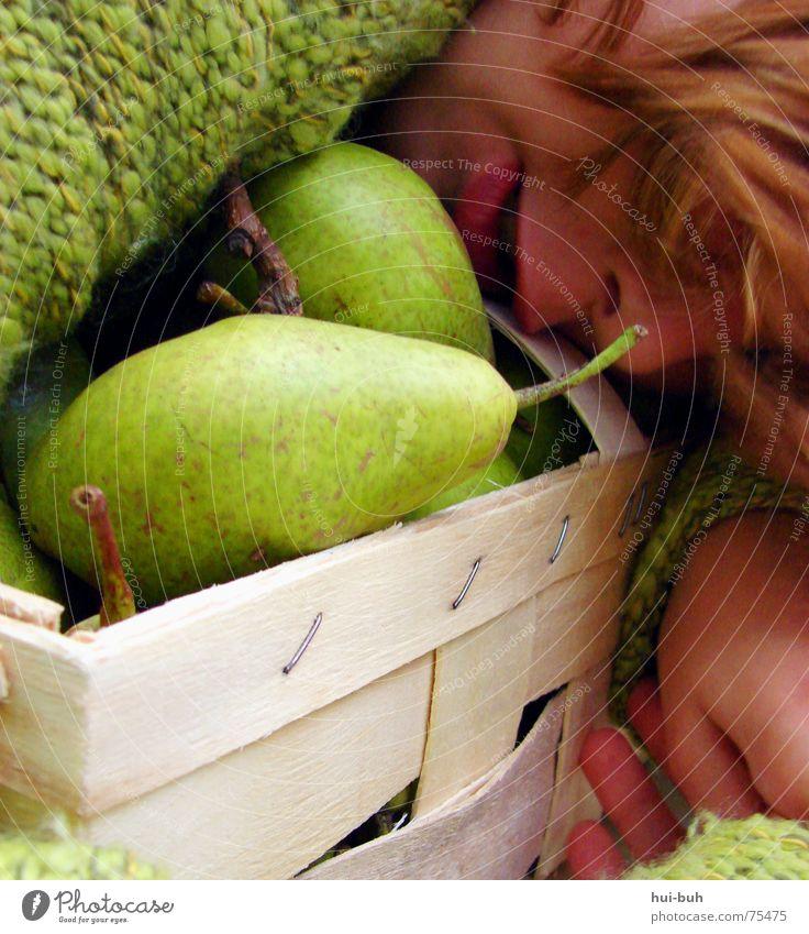 Birnenkörbchen Baum grün Ernährung Tier lachen Haare & Frisuren Mund Nase Frucht groß süß liegen Schutz Stengel niedlich lecker