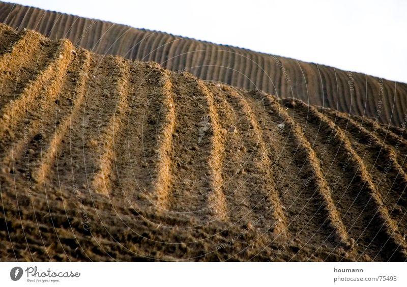streifen IM feld Herbst Landschaft braun Feld Erde Streifen Hügel Landwirtschaft Pflug