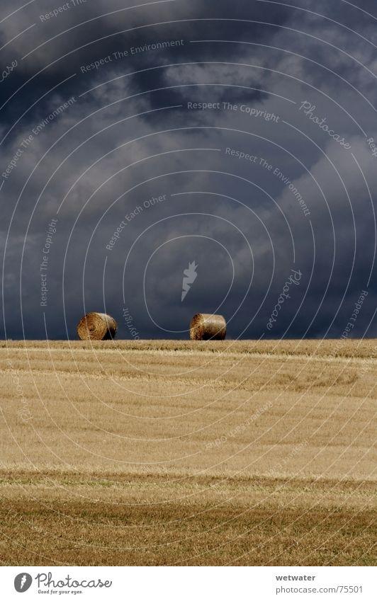 Two Haybales Natur Himmel Sommer Wolken Landschaft Feld gold Bauernhof August Kraichgau
