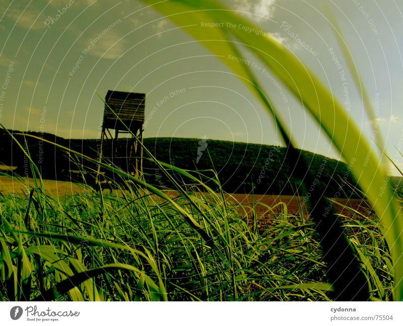 Auf zur Jagd! Hochsitz Feld Gras Landwirtschaft Stimmung Vogelperspektive grün Sommer Ackerbau Berge u. Gebirge Landschaft Himmel Perspektive Wind wehen Erde