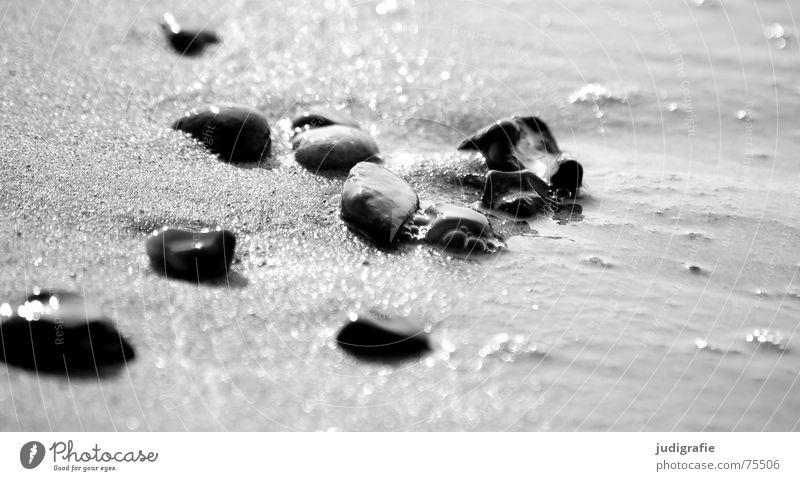 Steine Wasser Meer Strand schwarz See Sand glänzend nass mehrere viele Ostsee Verschiedenheit