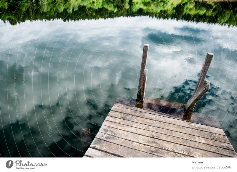 Im See sehen Ferien & Urlaub & Reisen Ausflug Sommerurlaub Umwelt Natur Landschaft Urelemente Wasser Himmel Wolken Sonnenlicht Schönes Wetter Sträucher Wald