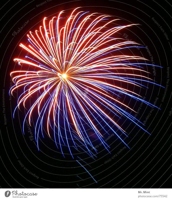 Light is in the air... Himmel Farbe Freude Glück Feste & Feiern glänzend leuchten Lebensfreude Silvester u. Neujahr Jahrmarkt Feuerwerk Nachthimmel Explosion