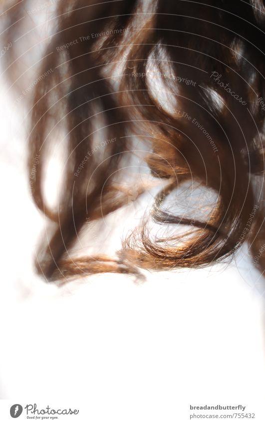 Locken Haare & Frisuren brünett langhaarig ästhetisch einfach natürlich braun Farbfoto Textfreiraum unten Licht
