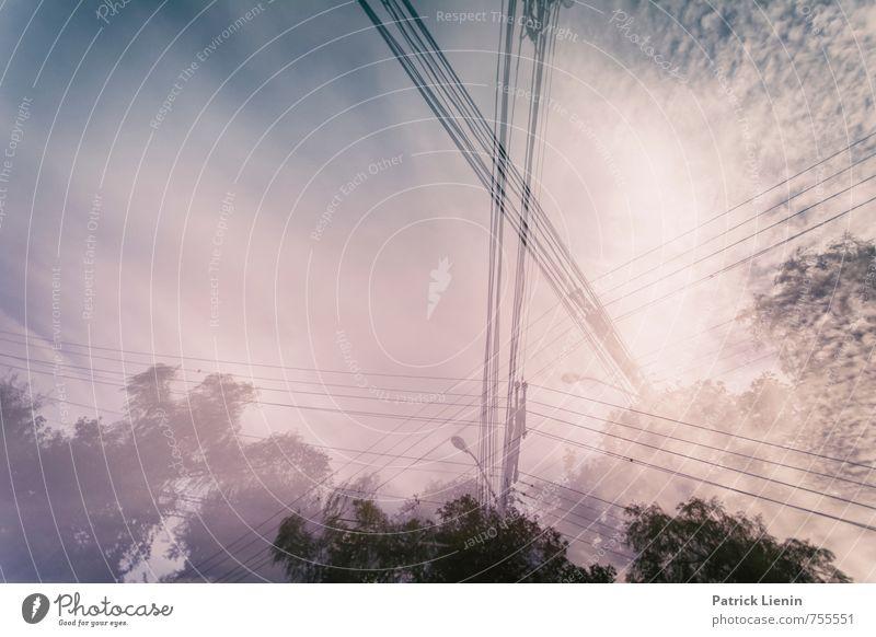 Vernetzt Umwelt Himmel Klimawandel Stadt Stimmung Zufriedenheit Stress Business Fortschritt innovativ Kraft modern nachhaltig Netzwerk Güterverkehr & Logistik