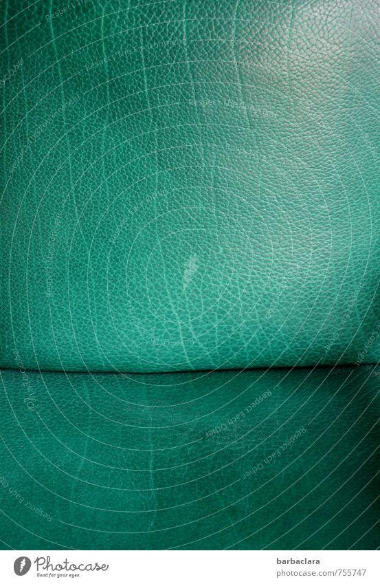 Leseecke Erholung Häusliches Leben Sessel Leder Linie kuschlig weich grün Geborgenheit Design Freizeit & Hobby Wert Farbfoto Innenaufnahme Detailaufnahme