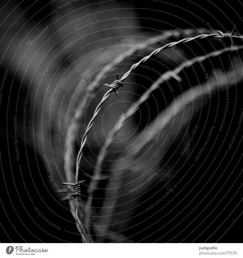 Verboten II Stacheldraht gesperrt geschlossen gefangen Zaun Barriere schwarz weiß Schwarzweißfoto Macht Sicherheit Strommast Pfosten Kontrast Stacheldrahtzaun