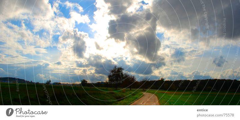 himmelsweg Natur Himmel Wolken Freiheit Wege & Pfade hell Feld Deutschland