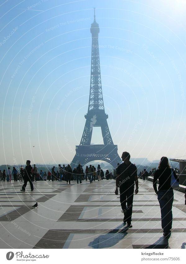 da hat eiffel gebaut! Mensch schön blau Zeichen Paris Frankreich Bauwerk Symbole & Metaphern Tourist Hauptstadt Bekanntheit Ausstellung Weltausstellung