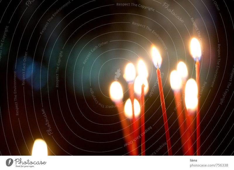 Geburtstagskinder Weihnachten & Advent weiß rot Freude dunkel schwarz gelb Wärme Liebe natürlich Glück Feste & Feiern leuchten Dekoration & Verzierung