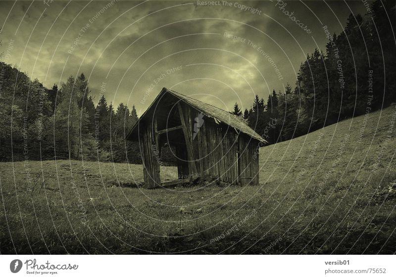 Düstere Aussichten Haus Wald dunkel Wiese Regen Hütte Gewitter Alm