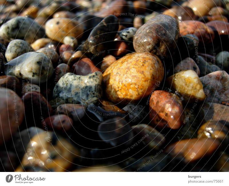 Die bunten Kiesel von Porto Natur schön weiß Meer rot Strand schwarz Stein braun orange glänzend nass Bodenbelag Kieselsteine scheckig Mittelmeer