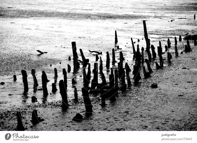 Ebbe Gezeiten Wattenmeer grau trist Schlamm Holz schwarz weiß dunkel Nordsee Pfosten verwittert verwitterung alt Strukturen & Formen Linie