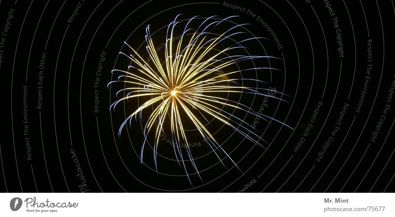 Light is in the air... II Silvester u. Neujahr Sendgericht Jahrmarkt Licht Explosion Nacht Langzeitbelichtung Feuerwerk Glück Freude Brand unendlicher fokus