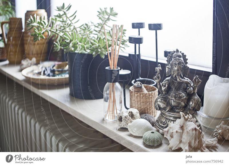 fensterbank Häusliches Leben Wohnung Dekoration & Verzierung Raum Bad Fenster Fensterbrett Heizkörper Sammlung Sammlerstück Ganesh Kerzenständer Muschel Vase
