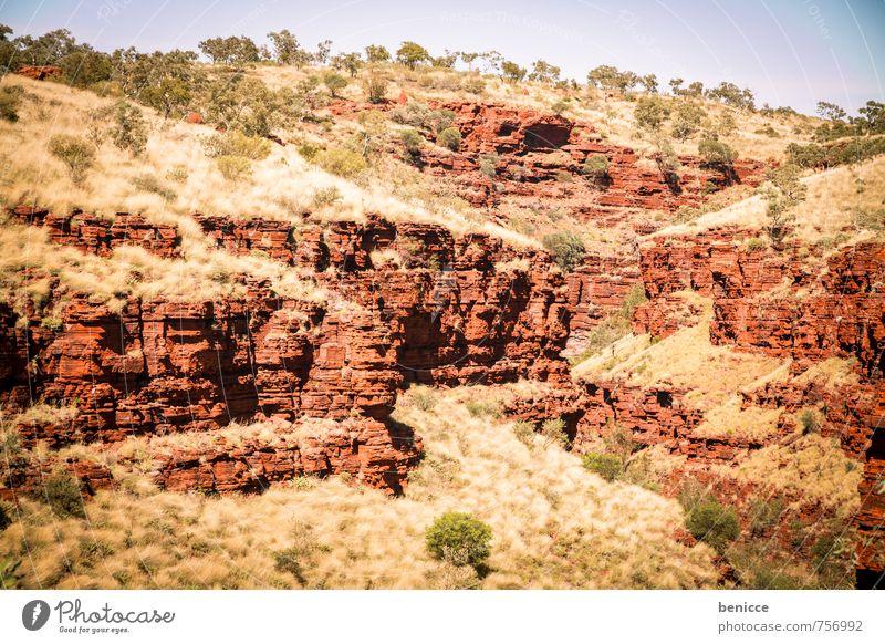 Bush Himmel Natur Baum rot Landschaft Tier Berge u. Gebirge Erde Sträucher Länder Schlucht Australien