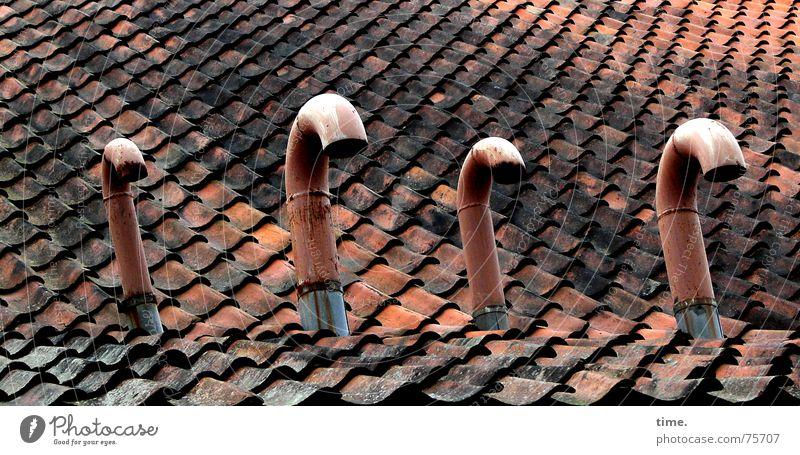 Geknickter Stolz rot Metall Dach kaputt Markt 4 verfallen Backstein Statue Röhren Schwan Dachziegel demütig Belüftung Emission