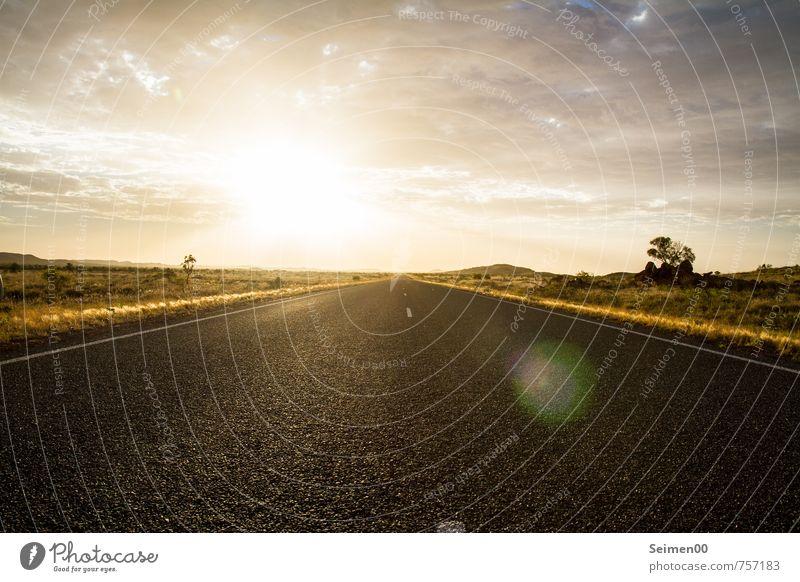 Flucht ins Outback Himmel Natur Ferien & Urlaub & Reisen Pflanze Sommer Sonne Baum Landschaft Wolken Ferne Umwelt Gras Freiheit Sand Horizont Erde