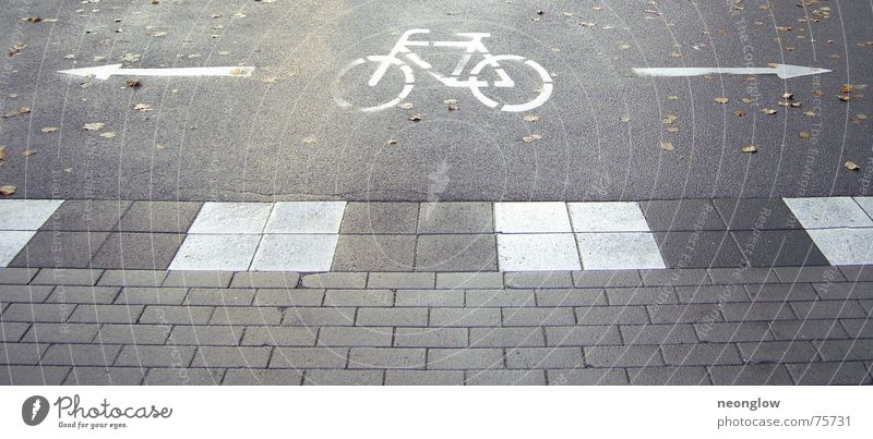 Fahrradfluchtwege dunkel Herbst Wege & Pfade Bodenbelag Pfeil Zeichen Hinweisschild