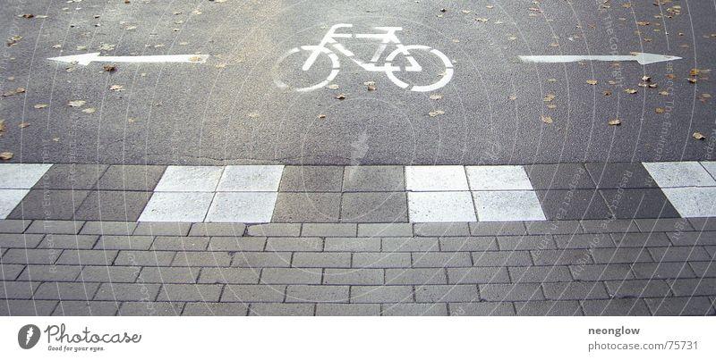 Fahrradfluchtwege dunkel Herbst Wege & Pfade Fahrrad Bodenbelag Pfeil Zeichen Hinweisschild