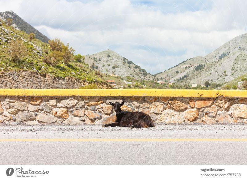 SCH*** TOURISTEN ... Natur Ferien & Urlaub & Reisen Sommer Erholung Landschaft ruhig Berge u. Gebirge Straße Reisefotografie natürlich Felsen Idylle Pause