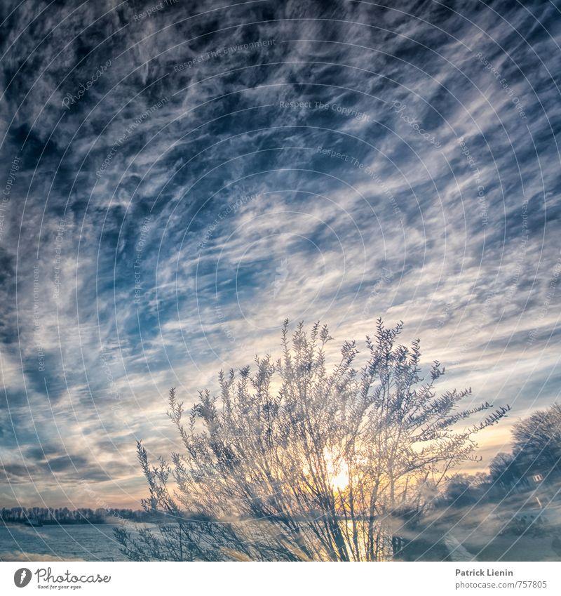 be here now Himmel Natur Pflanze Sommer Sonne Baum Erholung Landschaft Wolken Ferne Umwelt Leben Freiheit Erde Erde Zufriedenheit