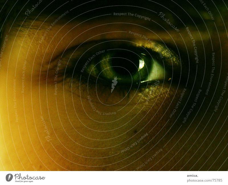 """ich sehe alles"" grün Hautfarbe dunkel Wimpern Augenbraue hell"