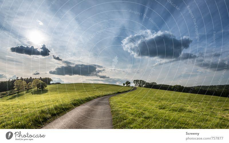 In die Ferne... Natur Landschaft Pflanze Himmel Wolken Sonne Sonnenlicht Frühling Sommer Schönes Wetter Gras Wiese Feld Hügel Eifel Straße Wege & Pfade fahren