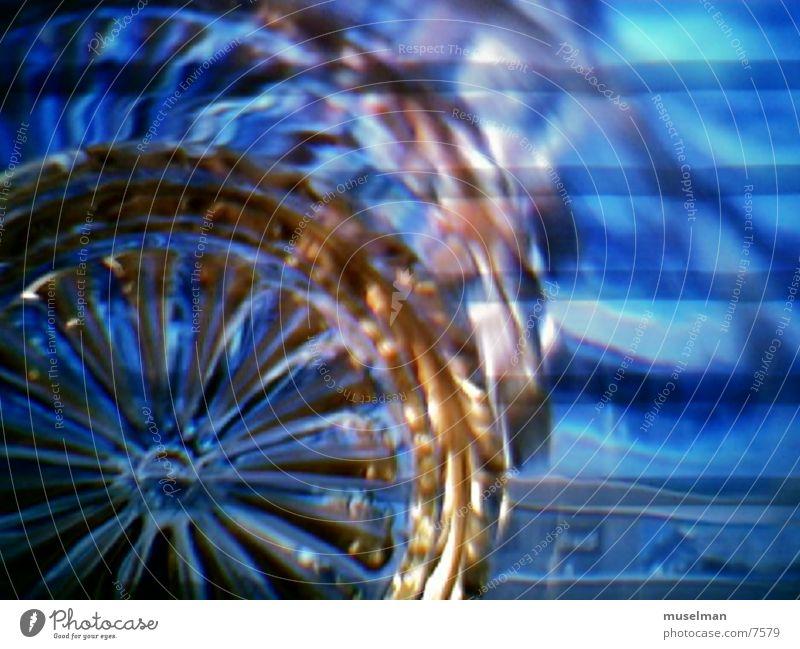 bluestrike1 Stil Licht Fototechnik blau glass