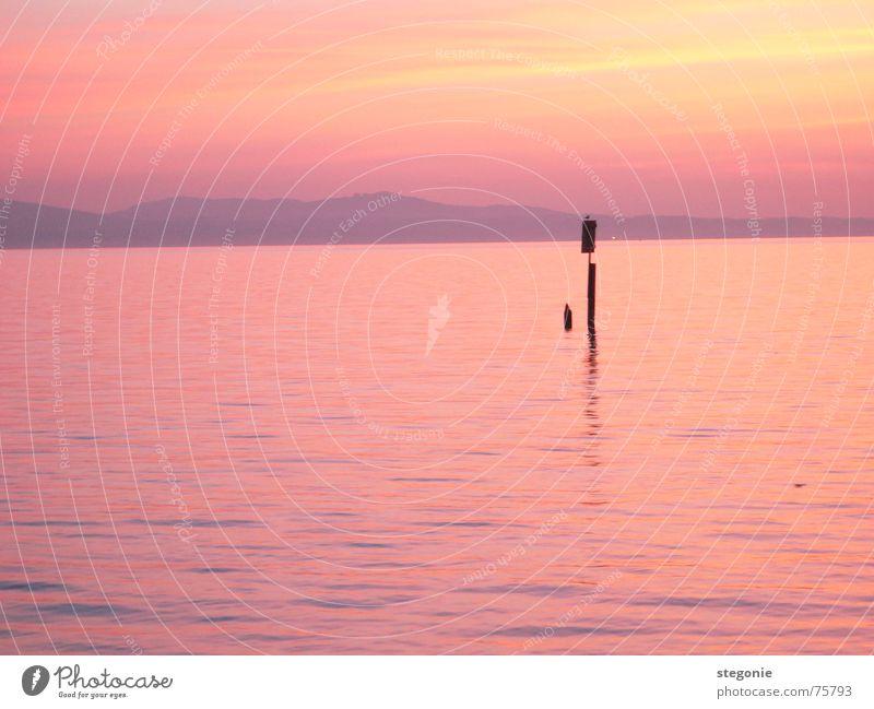abendstimmung in rosa Sonnenuntergang Naturphänomene Romantik rot träumen Erholung Außenaufnahme Landschaft Wasser Bodensee Abend Himmel Berge u. Gebirge