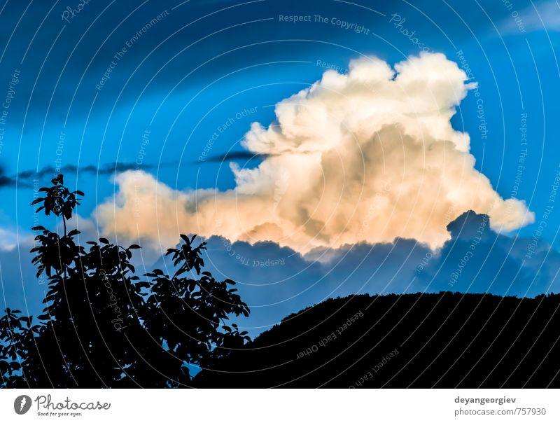 Dramatische Wolken und tiefblauer Himmel schön Sommer Natur Luft Horizont Klima Wetter Unwetter dunkel hell weiß Stimmung dramatisch Hintergrund Wasser
