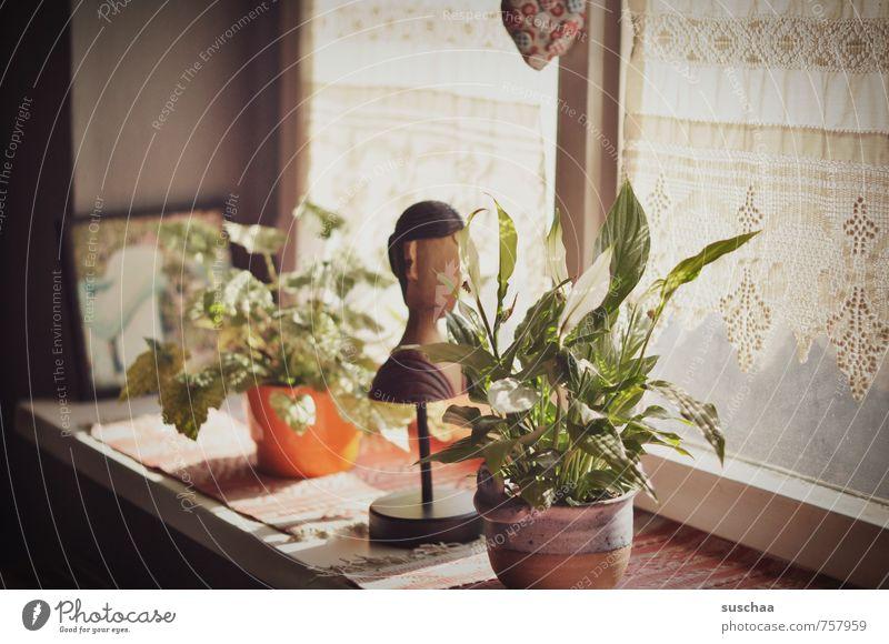 fensterbank in suschaatown Häusliches Leben Wohnung Dekoration & Verzierung Skulptur alt retro Autofenster Fensterbrett Zimmerpflanze Holzfigur Gedeckte Farben