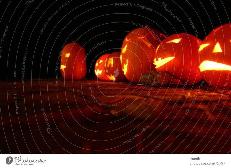 Kürbis-Köppe Halloween rot gelb ausgehöhlt Nacht schwarz Kerze gruselig ruhig Physik Nachtaufnahme Vor dunklem Hintergrund Langzeitbelichtung Licht orange
