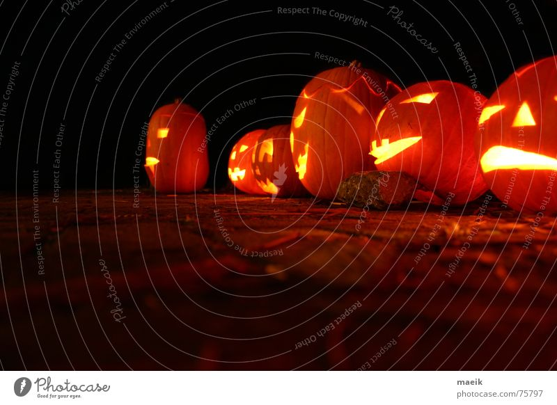 Kürbis-Köppe rot ruhig schwarz gelb Wärme Feste & Feiern orange Kerze gruselig Physik Halloween Nachtaufnahme Gemüse ausgehöhlt Vor dunklem Hintergrund